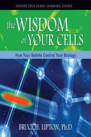 The wisdom of your cells